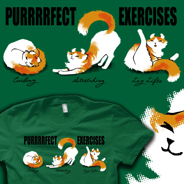 purrfect-exercises